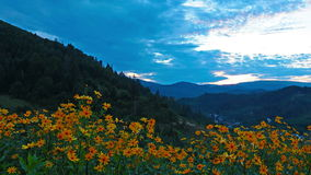 Paesaggio della montagna. 4K. HD PIENO, 4096x2304. stock footage