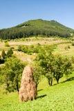 Paesaggio della montagna in Maramures Fotografia Stock Libera da Diritti
