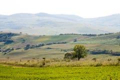 Paesaggio della montagna in Maramures Fotografie Stock