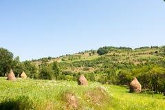 Paesaggio della montagna in Maramures Immagine Stock