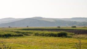 Paesaggio della montagna in Maramures Fotografia Stock