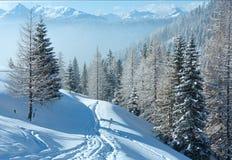 Paesaggio della montagna nebbiosa di inverno di mattina Fotografia Stock Libera da Diritti