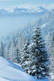 Paesaggio della montagna nebbiosa di inverno di mattina Fotografia Stock