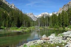 Paesaggio della montagna nel grande parco nazionale di Teton Immagine Stock