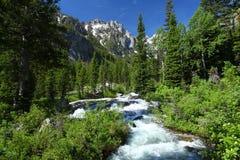 Paesaggio della montagna nel grande parco nazionale di Teton Fotografia Stock