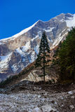 Paesaggio della montagna nel Nepal immagine stock libera da diritti