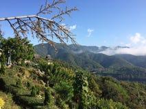 Paesaggio della montagna nel Nord della Tailandia Immagini Stock Libere da Diritti
