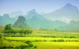 Paesaggio della montagna nel Vietnam Fotografia Stock