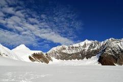 Paesaggio della montagna nell'Alaska Immagine Stock