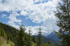Paesaggio della montagna nelle alpi, di estate Immagine Stock Libera da Diritti