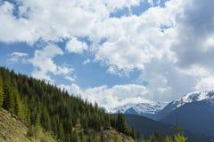 Paesaggio della montagna nelle alpi, di estate Fotografia Stock