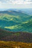 Paesaggio della montagna Picchi di montagna punti luminosi Montagne carpatiche, Ucraina Immagini Stock Libere da Diritti