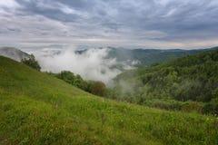 Paesaggio della montagna poco tempo dopo la pioggia di molla Alpi slovene Forest Road, albero venerabile, nebbia, nuvole e picchi Fotografie Stock Libere da Diritti
