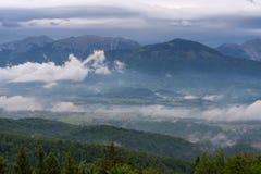 Paesaggio della montagna poco tempo dopo la pioggia di molla Alpi slovene Forest Road, albero venerabile, nebbia, nuvole e picchi Fotografie Stock