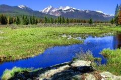 Paesaggio della montagna rocciosa con il fiume Fotografia Stock