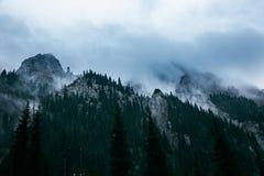 Paesaggio della montagna Tien Shan La valle del fiume lasciato Talgar kazakhstan fotografie stock libere da diritti