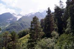 Paesaggio della montagna un giorno pieno di sole Immagini Stock Libere da Diritti
