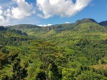 Paesaggio della montagna in una valle verde con i villaggi Fotografia Stock Libera da Diritti