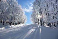 Paesaggio della montagna in Vigla, centro dello sci di Florina, Grecia Fotografia Stock