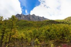 Paesaggio della montagna a Yading Fotografia Stock