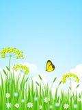 Paesaggio della natura. Immagine Stock