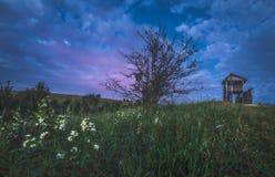 Paesaggio della natura con l'albero nudo Immagini Stock