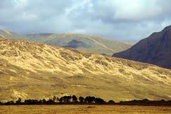Paesaggio della natura dal nord-ovest dell'Irlanda Immagini Stock Libere da Diritti