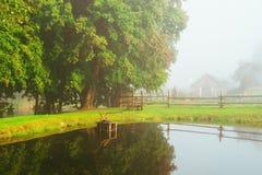 Paesaggio della natura del lago fotografie stock