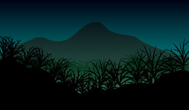 Paesaggio della natura della giungla Fotografie Stock Libere da Diritti
