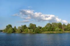 Paesaggio della natura di estate con gli alberi sul litorale del fiume Fotografie Stock Libere da Diritti