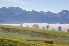 Paesaggio della nebbia in Allgaeu Immagini Stock