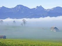 Paesaggio della nebbia in Allgaeu Fotografie Stock