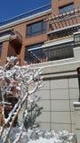 Paesaggio della neve-covred Fotografia Stock