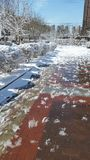 Paesaggio della neve-covred Fotografie Stock Libere da Diritti