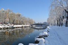 Paesaggio della neve dell'università di Tsinghua Immagini Stock
