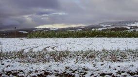 Paesaggio della neve nell'inverno Fotografie Stock