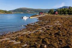 Paesaggio della Norvegia Fotografia Stock