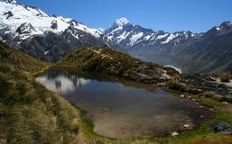 Paesaggio della Nuova Zelanda Fotografia Stock Libera da Diritti