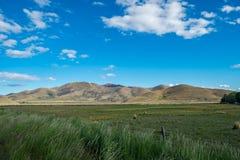 Paesaggio della Nuova Zelanda Immagini Stock Libere da Diritti