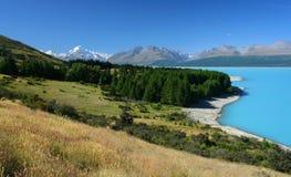 Paesaggio della Nuova Zelanda con il cuoco del supporto nella priorità bassa Fotografia Stock