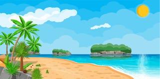 Paesaggio della palma sulla spiaggia Fotografia Stock Libera da Diritti