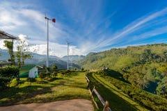 Paesaggio della piantagione di tè 2000 a Doi Ang Khang Fotografie Stock
