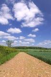 Paesaggio della pista del fango Fotografia Stock