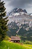 Paesaggio della primavera in alpi svizzere Valle di Grindelwald, Svizzera Fotografia Stock