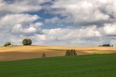 Paesaggio della primavera in Baviera, Germania Fotografia Stock Libera da Diritti