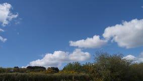 Paesaggio della primavera & cielo, Cornovaglia, Regno Unito Immagini Stock Libere da Diritti
