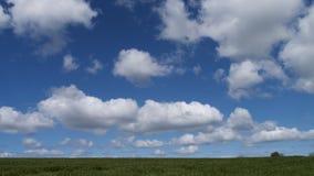 Paesaggio della primavera & cielo, Cornovaglia, Regno Unito Immagine Stock Libera da Diritti
