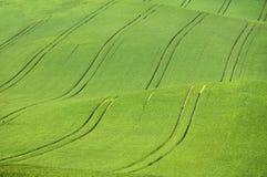 Paesaggio della primavera con i campi colorati e poca cappella Fotografia Stock