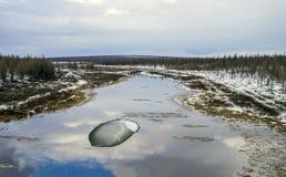 Paesaggio della primavera con il fiume ed il ghiaccio immagine stock