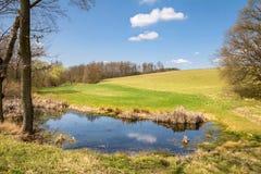 Paesaggio della primavera con lo stagno ed il cielo blu Immagine Stock